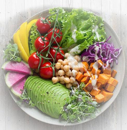 raw-food-diet-recipes